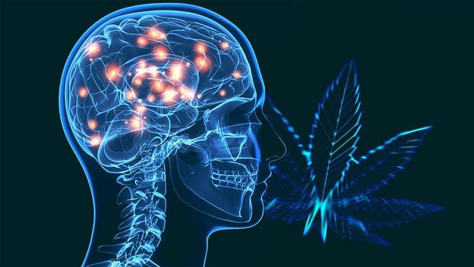 parkinsons treated with cannabis